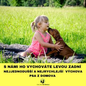 psi_skola1