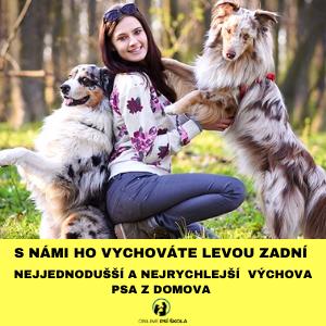 psi_skola2